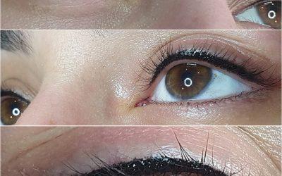 Sharon Eyes Pigmentation Beginner Online Course